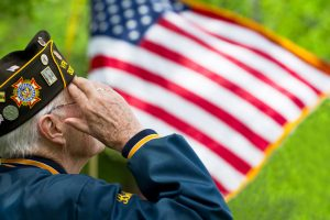nursing home veteran care